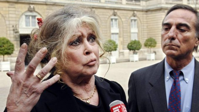 Brigitte Bardot: Hollywood Actresses Are 'Outrageous Hypocrites'